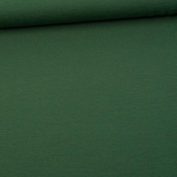 Baumwolljersey UNI tannengrün