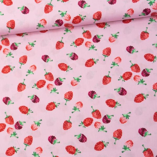 Baumwollwebware Popeline Himbeeren rosa