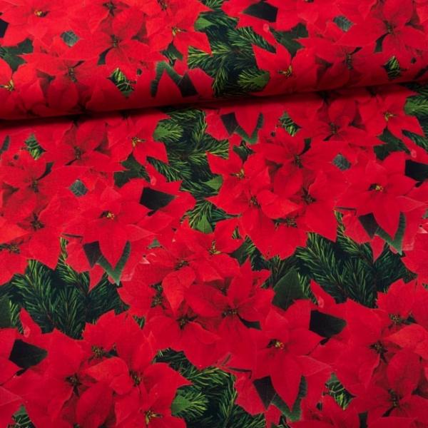 Baumwollwebware Weihnachtsstern rot